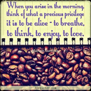"Quote from Byequotes.com - ""When you arise in the morning, think of what a precious privilege it is to be alive - to breathe, to think, to enjoy, to love"". - Marcus Aurelius"