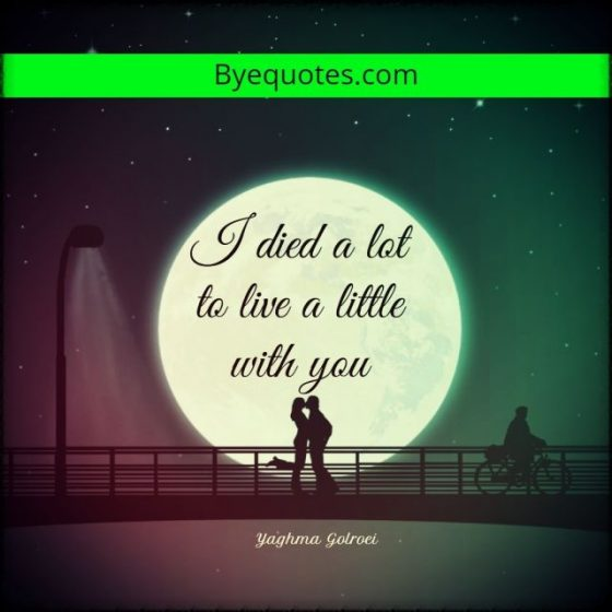 Quote from Byequotes.com - ''I died a lot to live a little with you'' - Yaghma Golroei