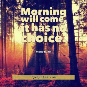 "Quote from Byequotes.com - ""Morning will come, it has no choice"". - Marty Rubin"